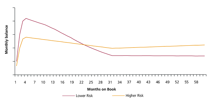 Figure 12: Example monthly balance for a long-term balance transfer offer for a lower risk and a higher risk cohort of consumers